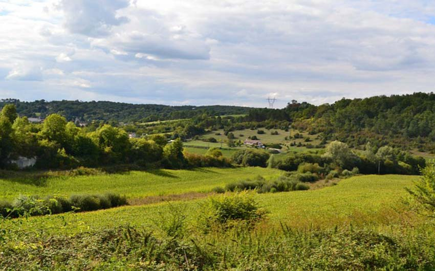 Fields to Explore in Midi Pyrenees