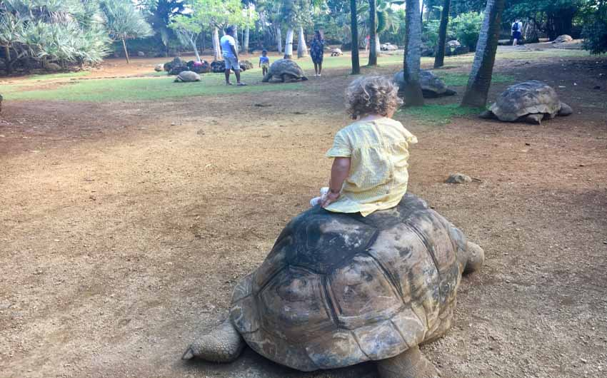 St Regis Resort in Mauritius Zoo with The Little Voyager