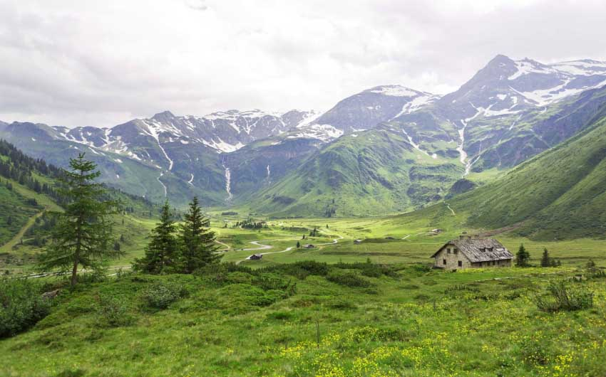 Salzburger Land Summer Fields with The Little Voyager