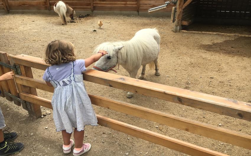 Child petting a pony