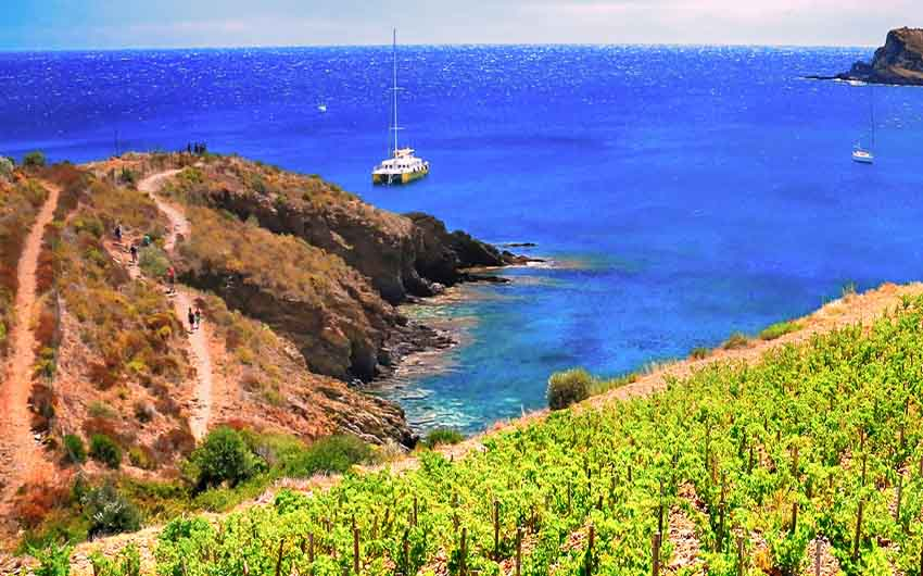 French Wine Estate Costal Scene with The Little Voyager