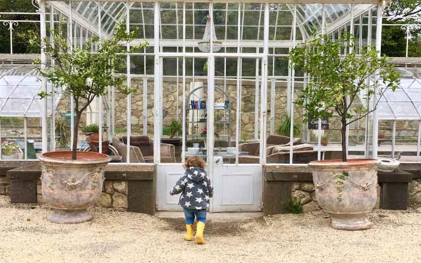 French Wine Estate Greenhouse with The Little Voyager