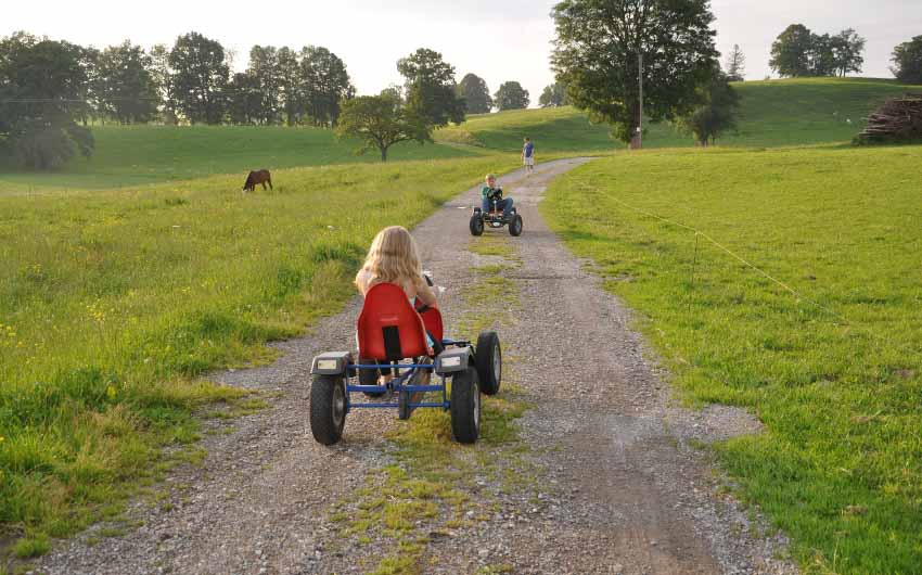 The Bavarian Farm Go Karts with The Little Voyager