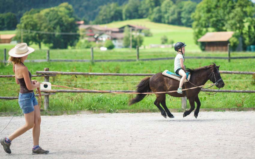 The Bavarian Farm Horse Riding with The Little Voyager