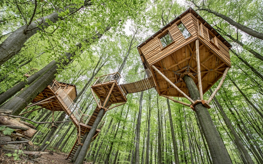 The German Treehouses