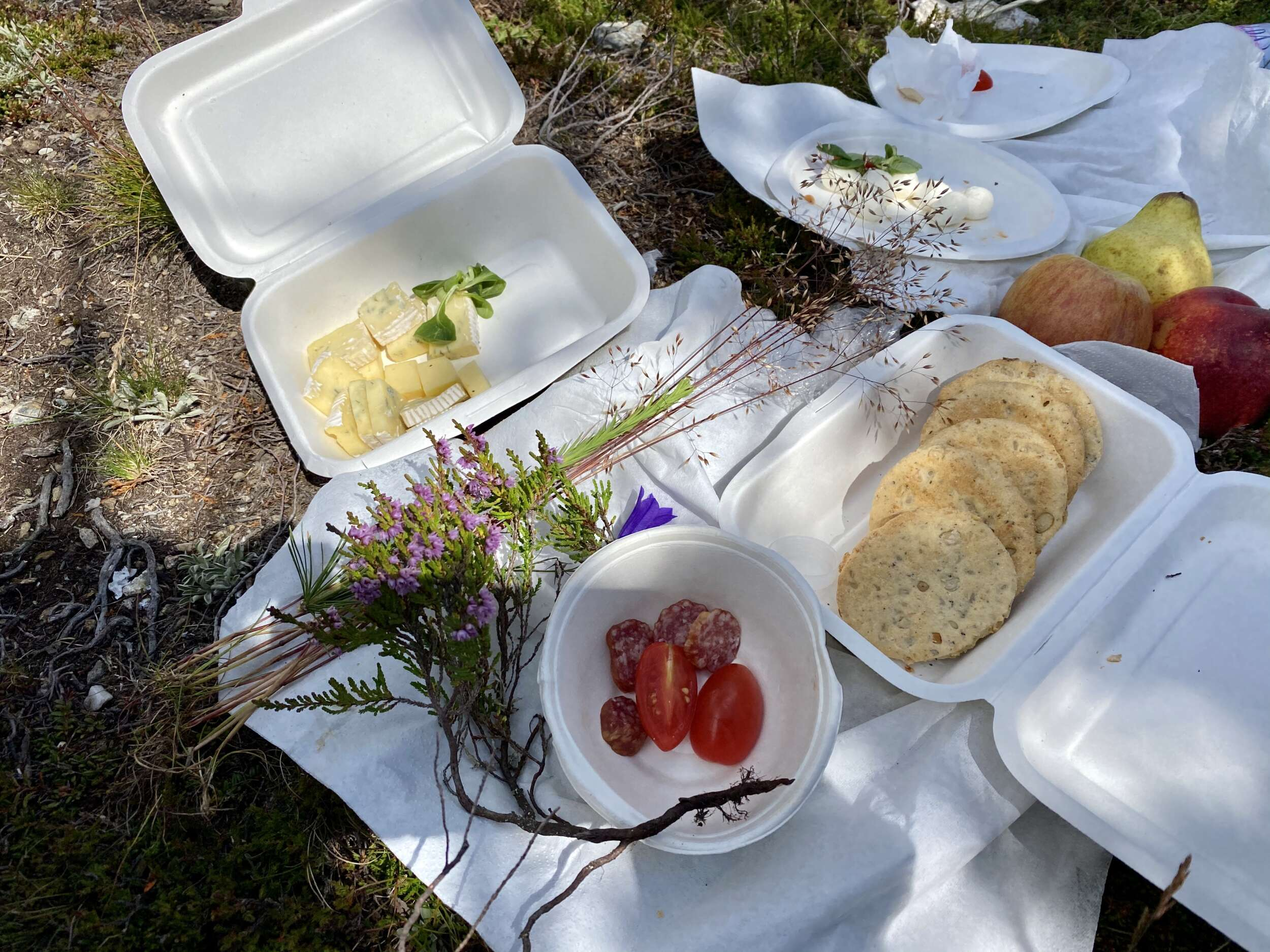 Pic nic in South Tyrol